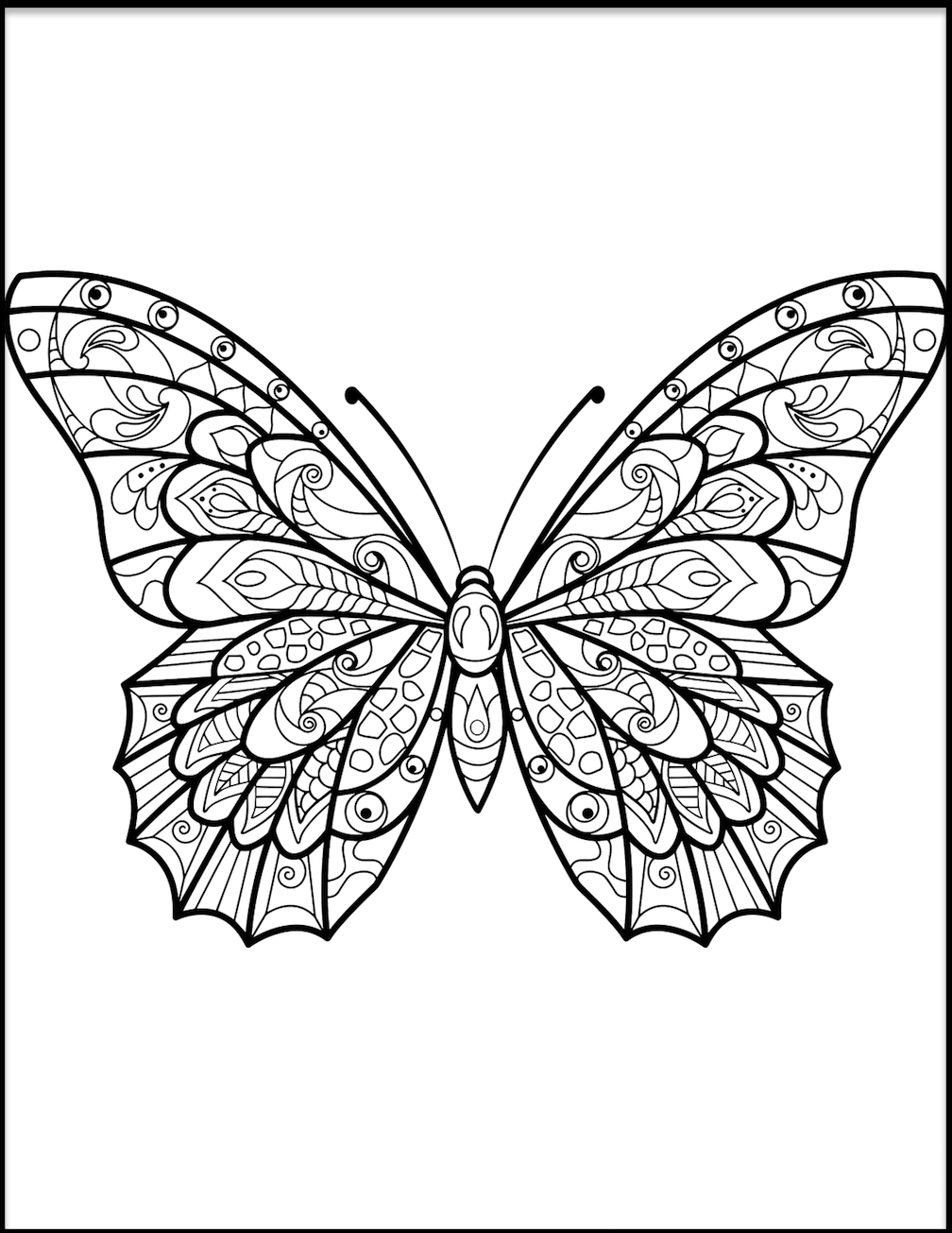 butterfly color page butterfly coloring pages page color butterfly