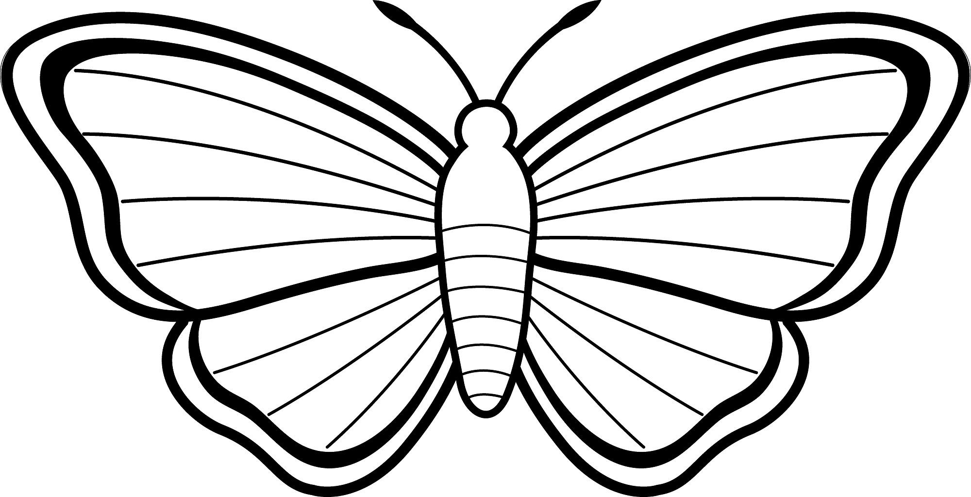 butterfly color page free printable butterfly coloring pages for kids butterfly page color