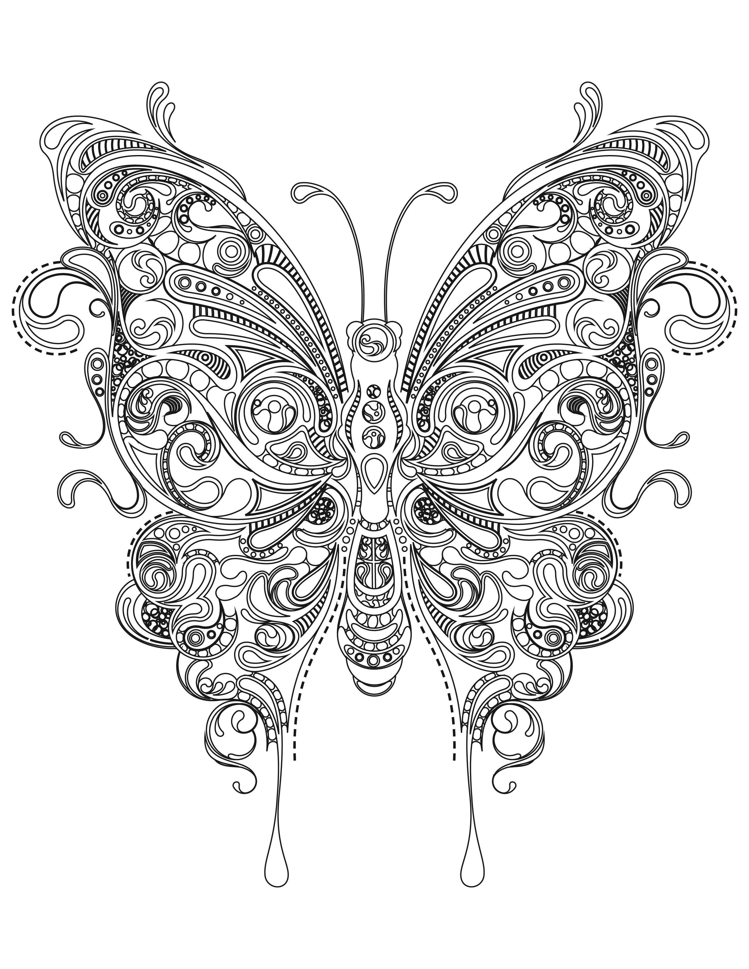 butterfly color page free printable butterfly colouring pages in the playroom page color butterfly