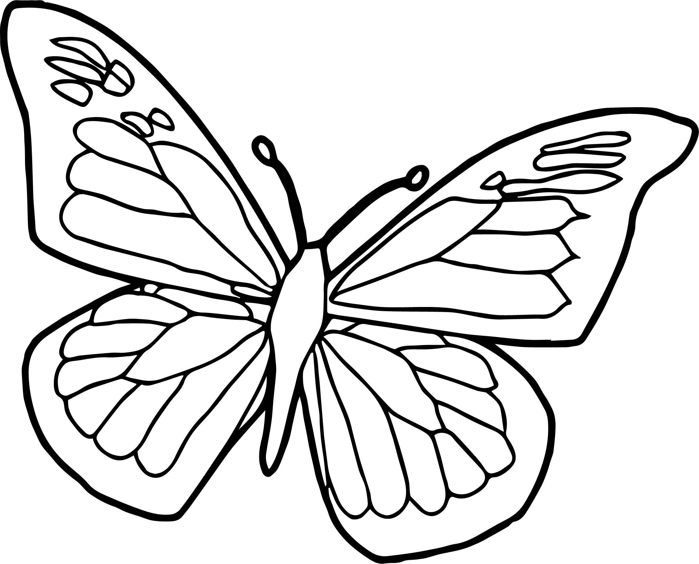 butterfly color page printable butterfly coloring pages for kids cool2bkids page butterfly color