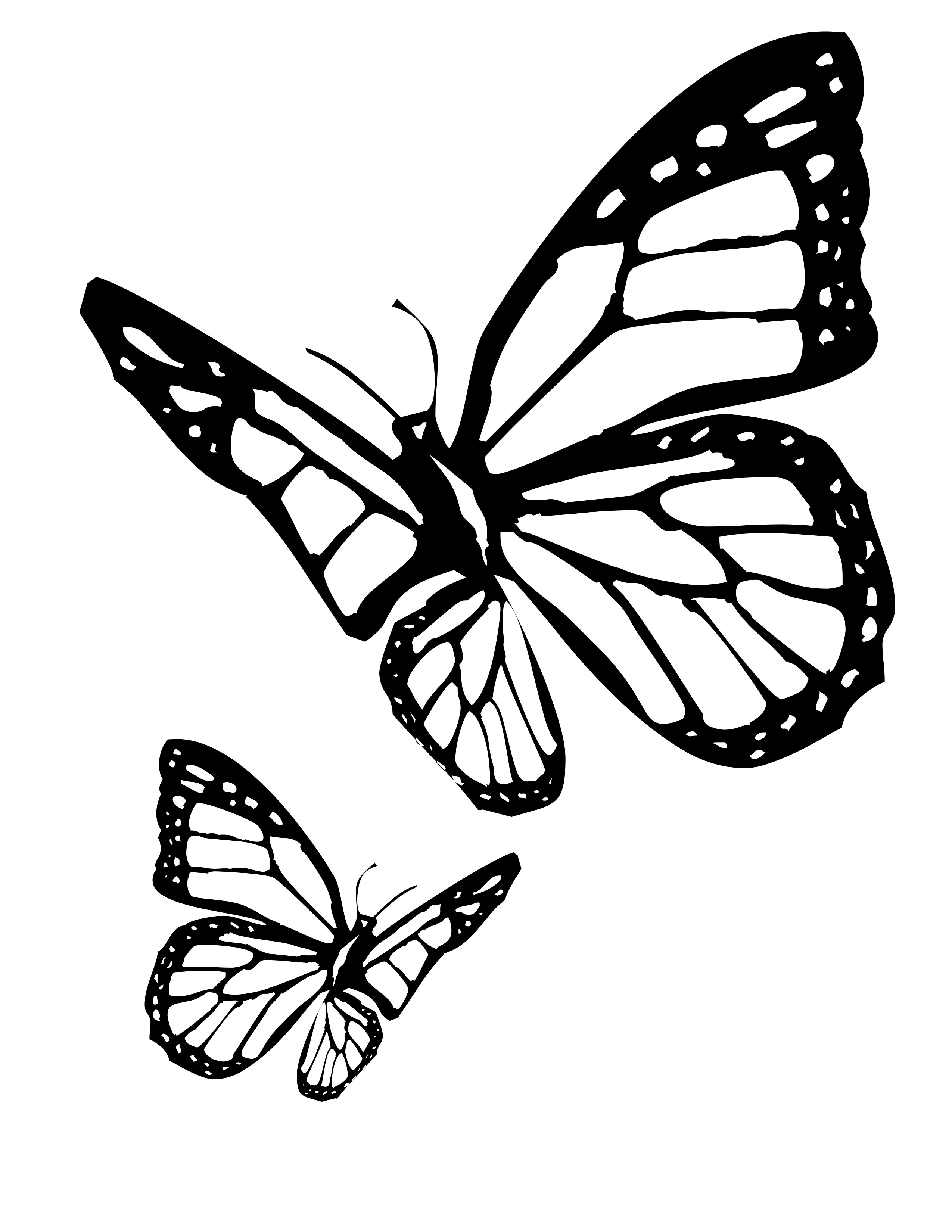 butterfly coloring pages free printable cute butterfly coloring pages for adults coloring home free printable butterfly pages coloring