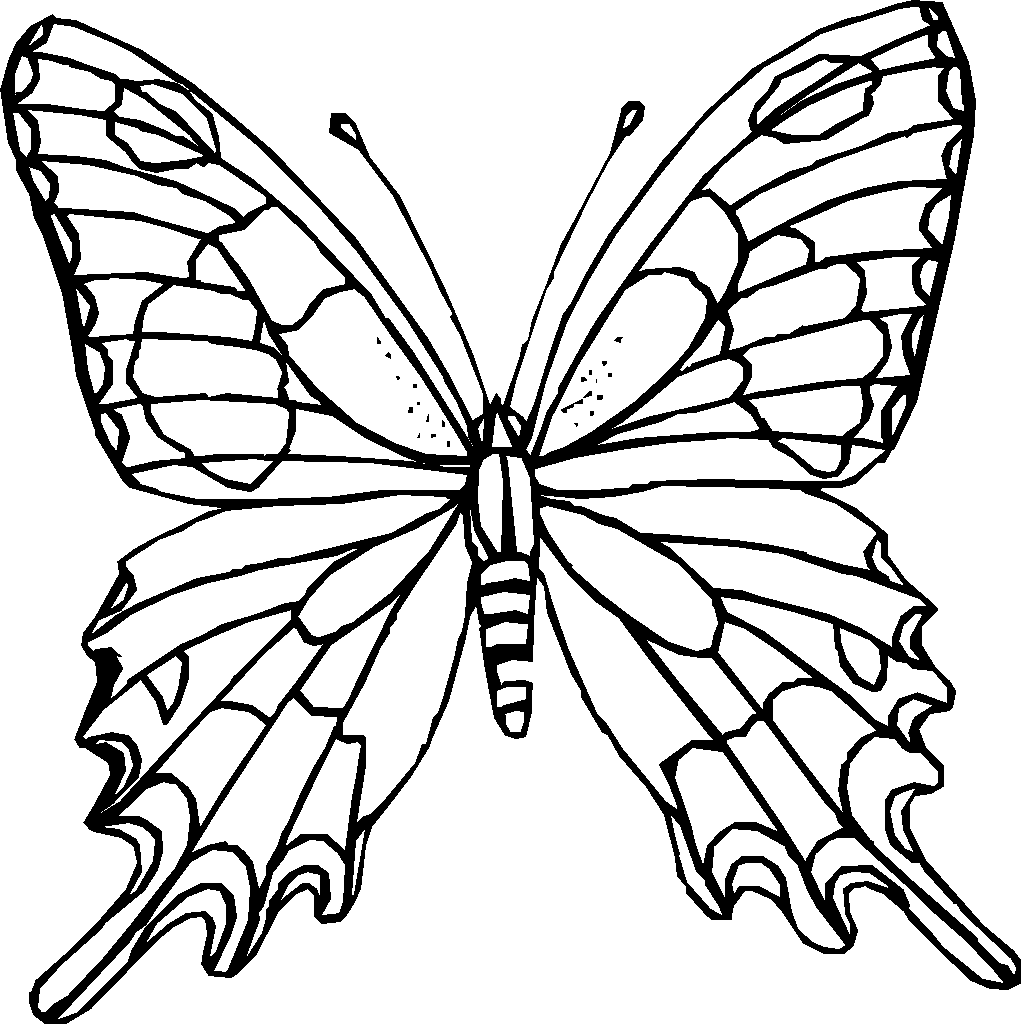 butterfly coloring pages free printable free printable butterfly coloring pages for kids free coloring butterfly pages printable