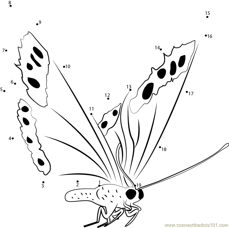 butterfly dot to dot printable fly butterfly dot to dot printable worksheet connect the dot butterfly dot to printable