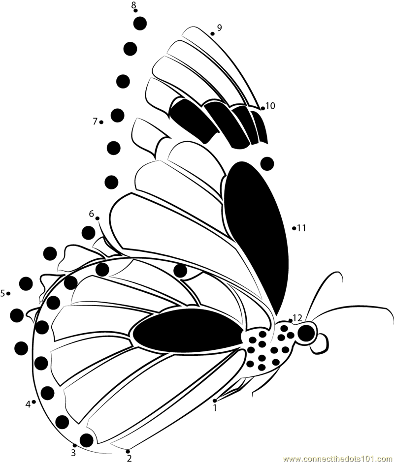 butterfly dot to dot printable monarch butterflies flying dot to dot printable worksheet to butterfly dot dot printable