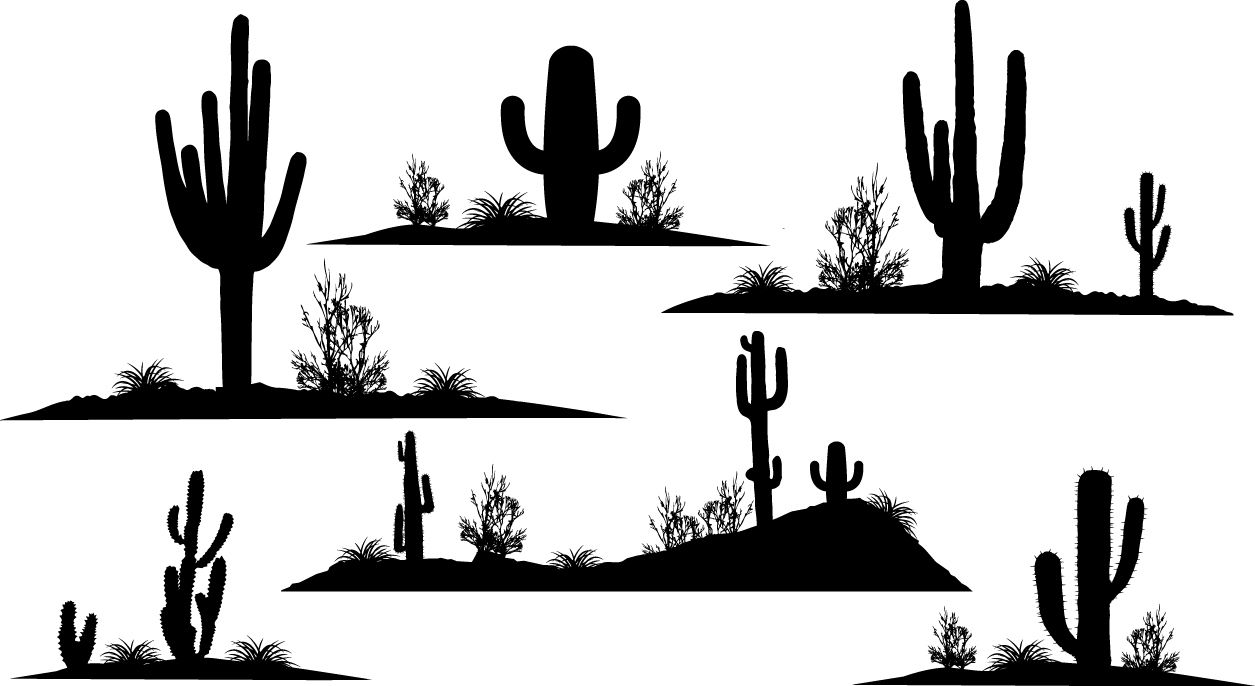 cactus silhouette cactus silhouette hd png download 800x8002607463 cactus silhouette