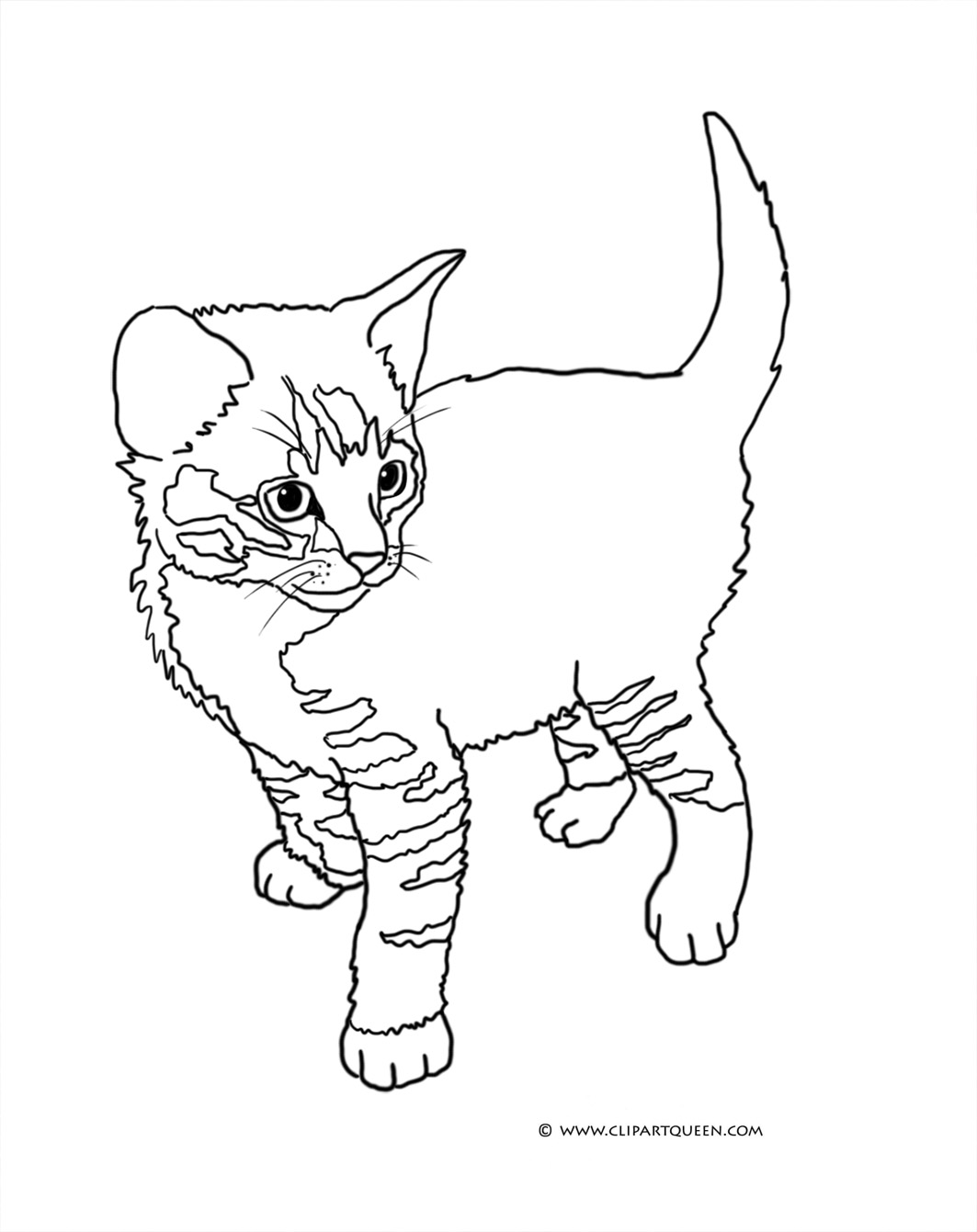 cat clipart coloring cat clipart coloring cat clipart coloring