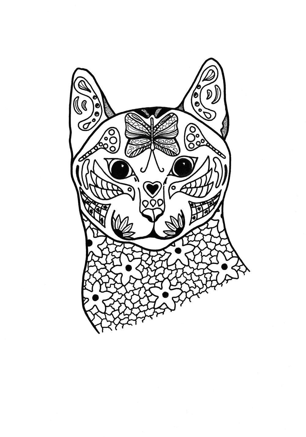 cat colouring pages free printable cat coloring pages for kids cool2bkids cat colouring pages