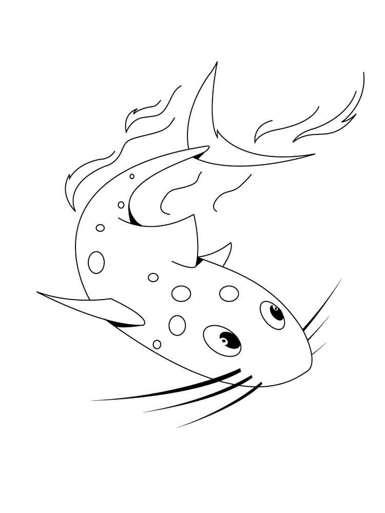 catfish coloring page catfish 10 coloring page free printable coloring pages page catfish coloring