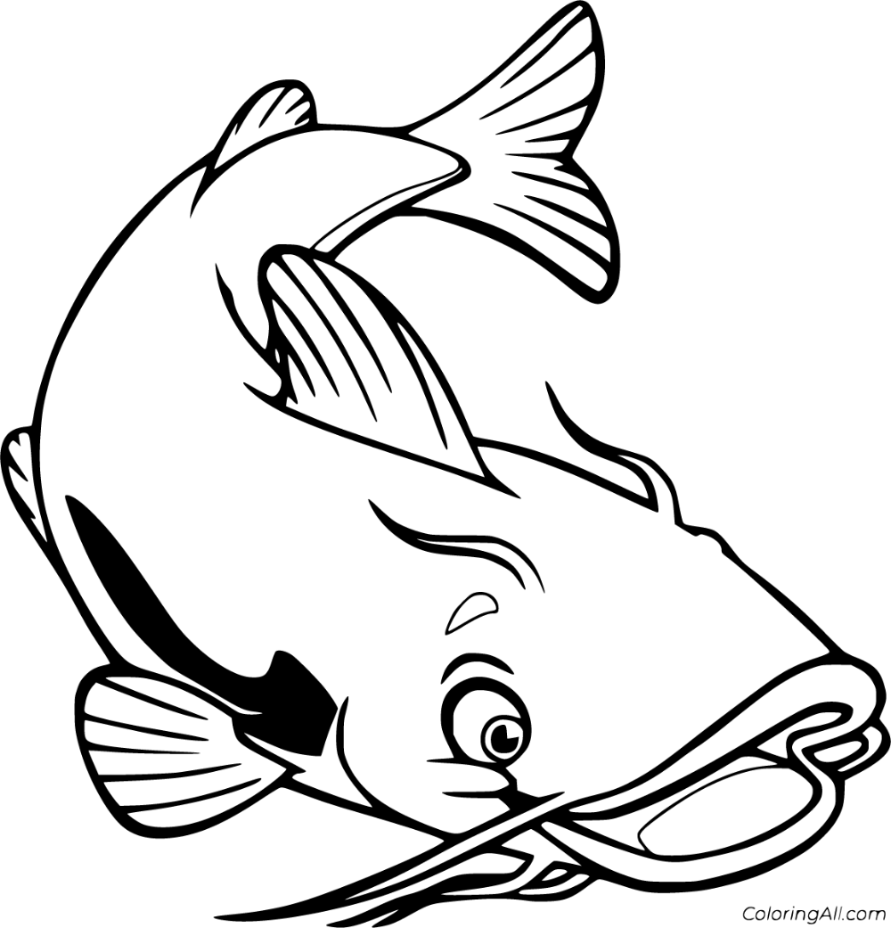 catfish coloring page catfish coloring page page coloring catfish