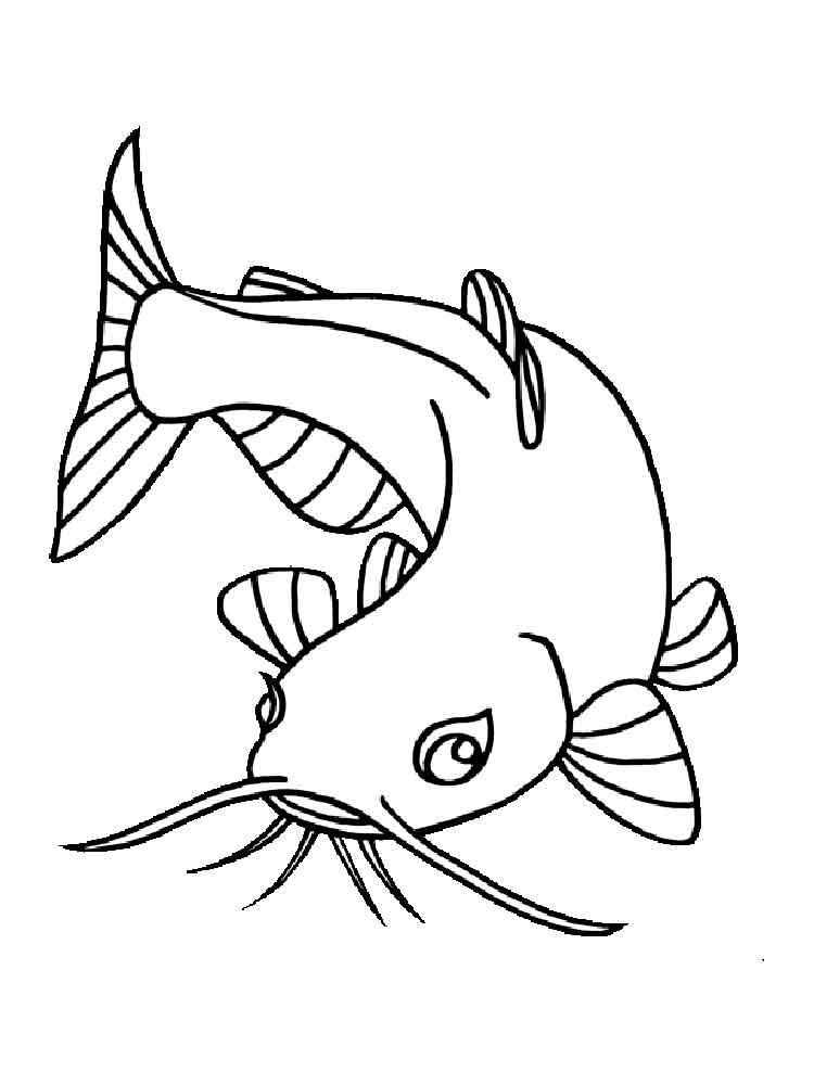 catfish coloring page catfish coloring pages coloring pages to download and print page catfish coloring