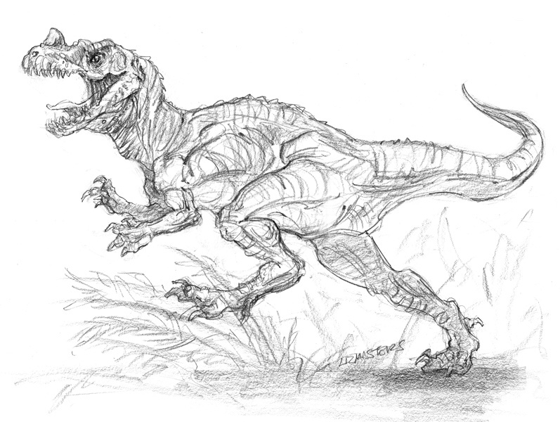 ceratosaurus coloring pages ceratosaurus coloring pages at getdrawings free download coloring ceratosaurus pages