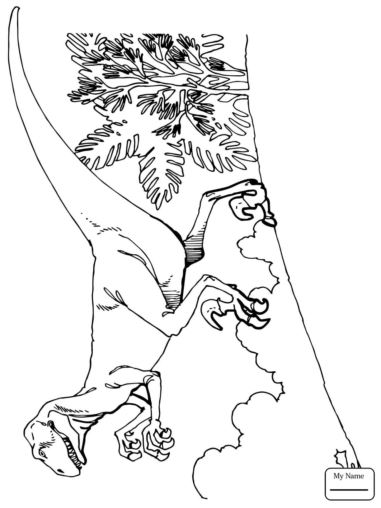 ceratosaurus coloring pages ceratosaurus coloring pages at getdrawings free download coloring ceratosaurus pages 1 1