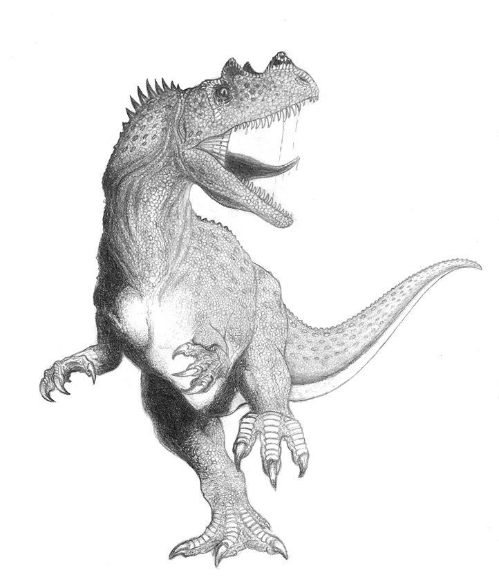 ceratosaurus coloring pages robin39s great coloring pages ceratosaurus and dinosaur tracks ceratosaurus coloring pages 1 1