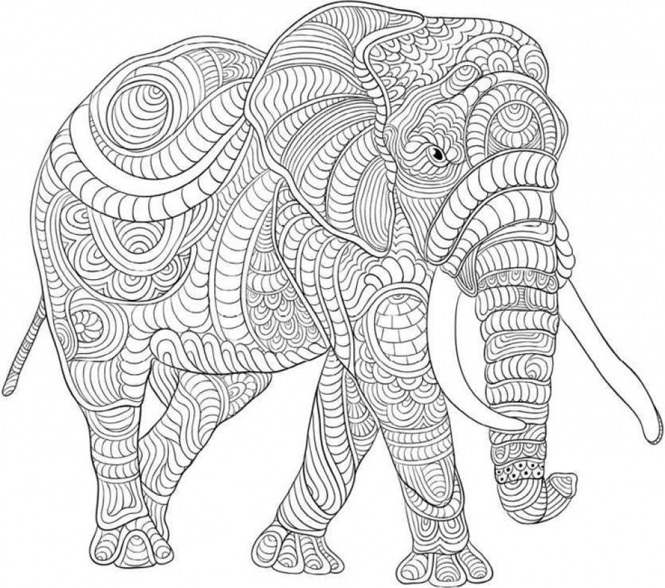 challenging coloring sheets coloring pages for adults difficult animals 45 coloring sheets challenging coloring