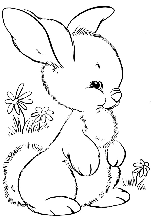 chibi bunny coloring pages cute looking fluffy little rabbit coloring pages print coloring pages chibi bunny