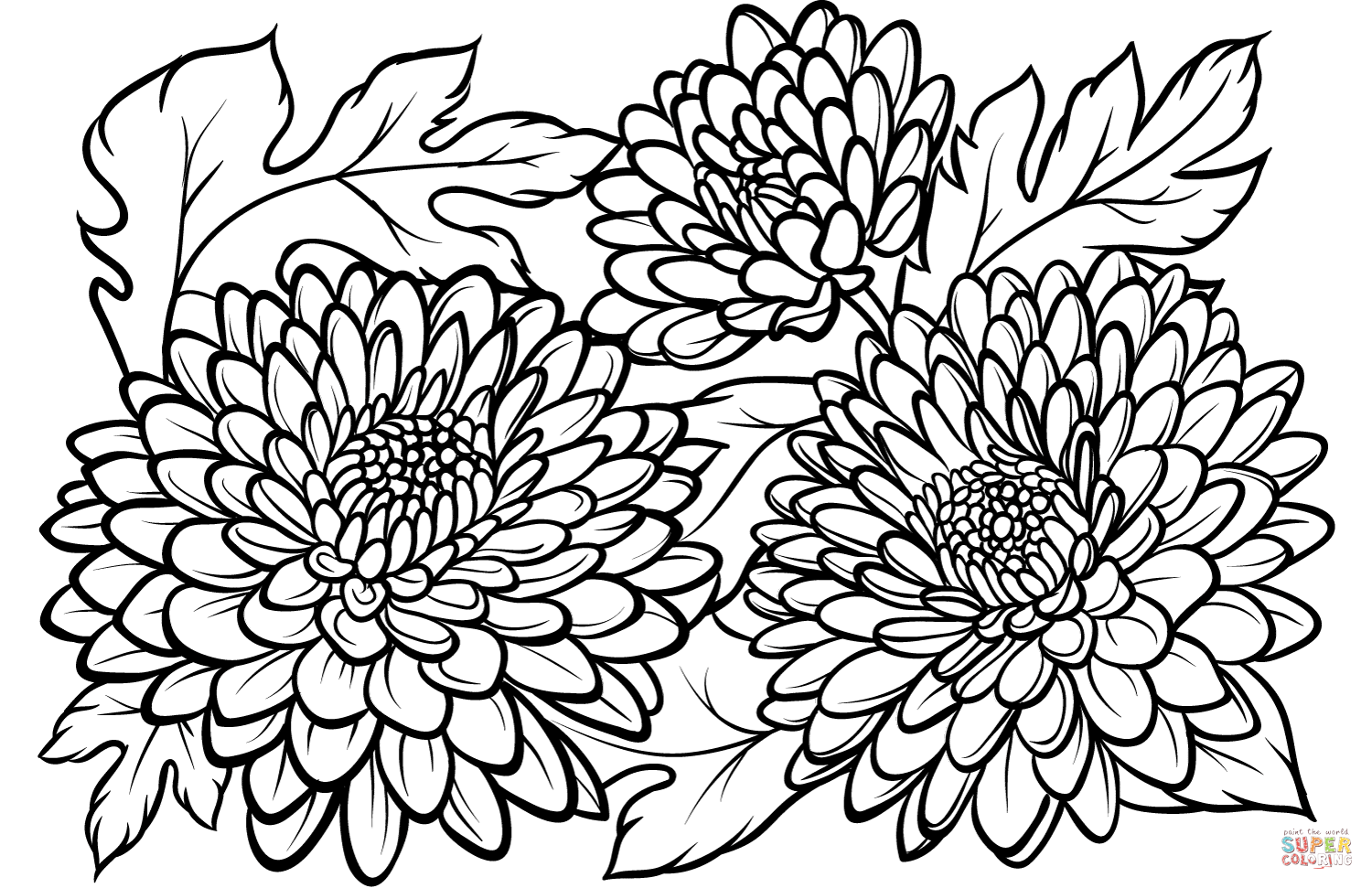 chrysanthemum coloring pages free kevin henkes coloring pages coloring home chrysanthemum coloring pages