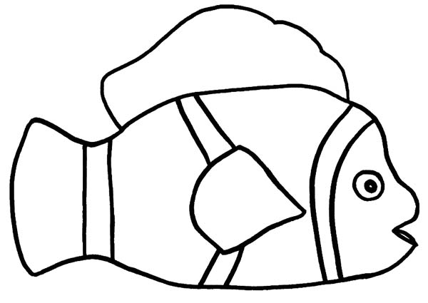 clown fish drawing how to draw clown fish coloring pages best place to color fish drawing clown