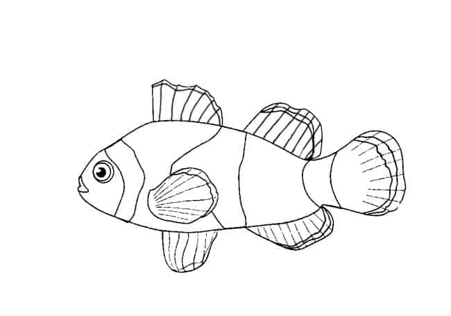 clownfish drawing how to draw a clownfish step by step easy animals 2 draw clownfish drawing