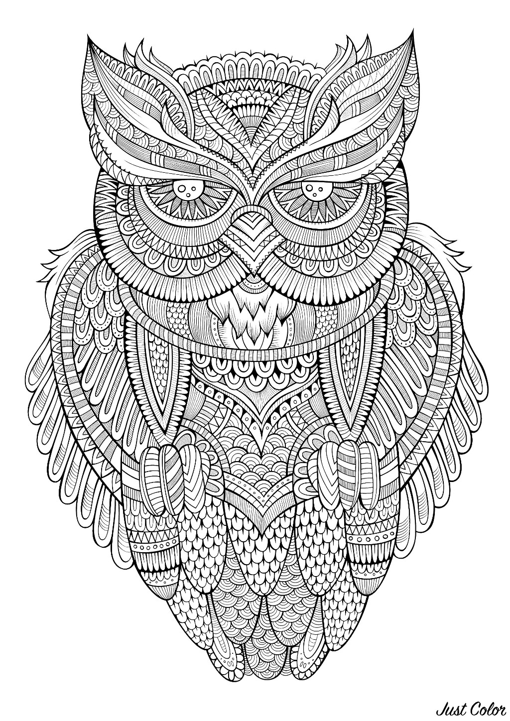 color in pages peaceful owl owls adult coloring pages pages in color