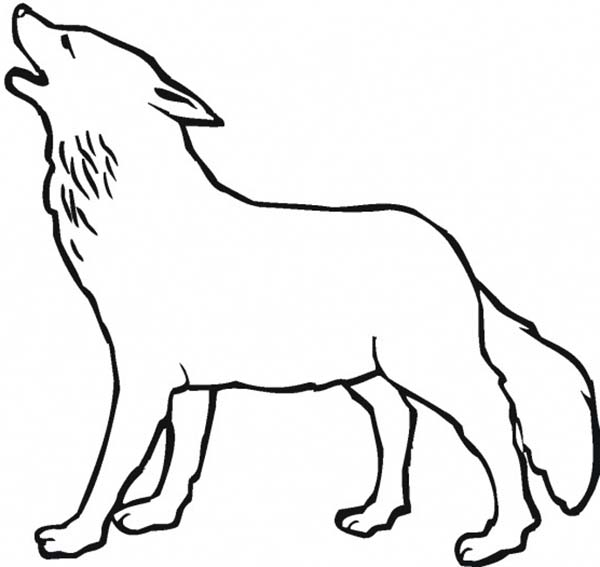 color in wolf free wolf coloring pages in wolf color