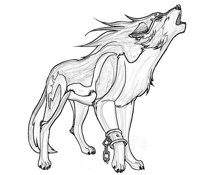 color in wolf free wolf coloring pages wolf color in