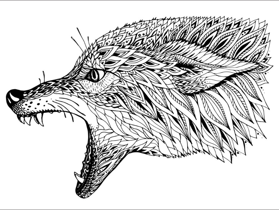color in wolf wolf howling in the night coloring page download print in wolf color