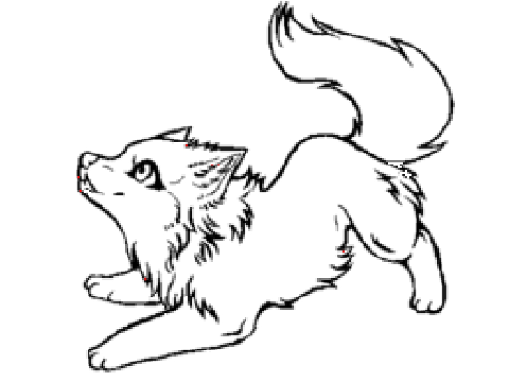 color in wolf wolf template animal templates free premium templates in color wolf