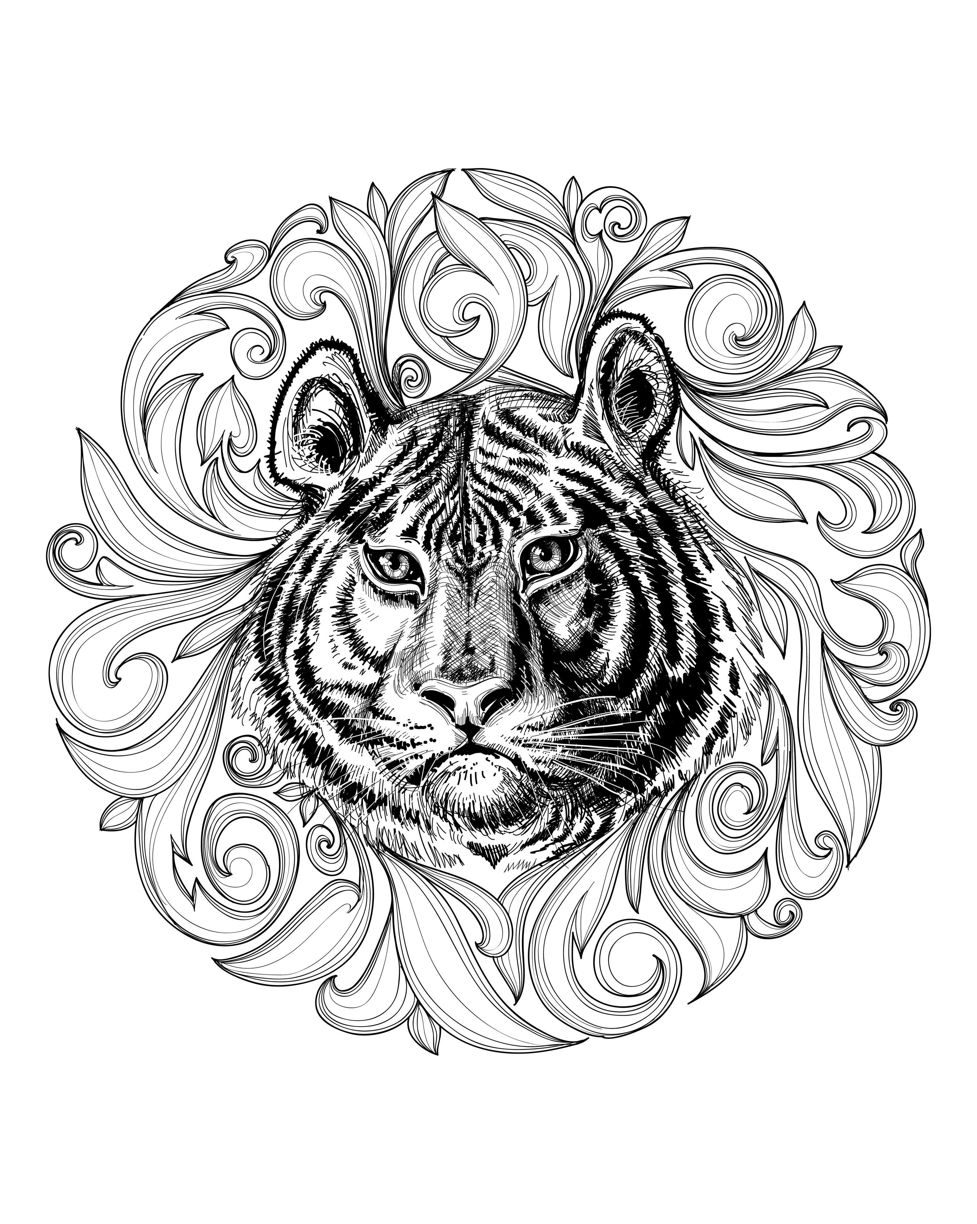 coloring africa the continent of africa coloring page coloring home africa coloring