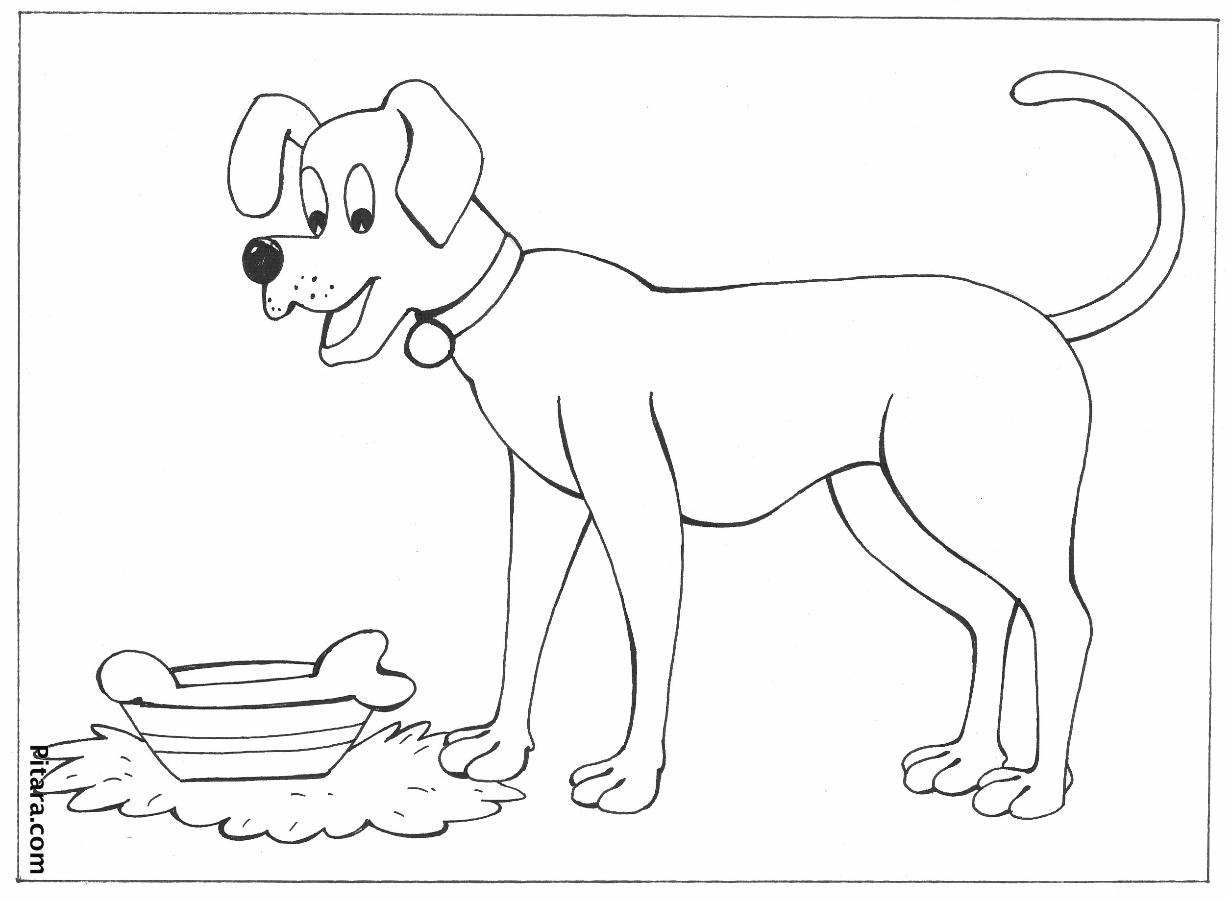coloring animal pictures to colour free printable cute animal coloring pages coloring home coloring to pictures colour animal