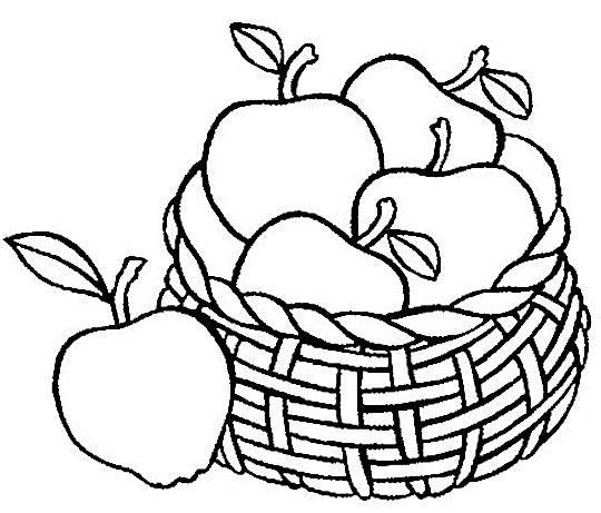 coloring apple basket clipart panda free clipart images apple coloring basket 1 2