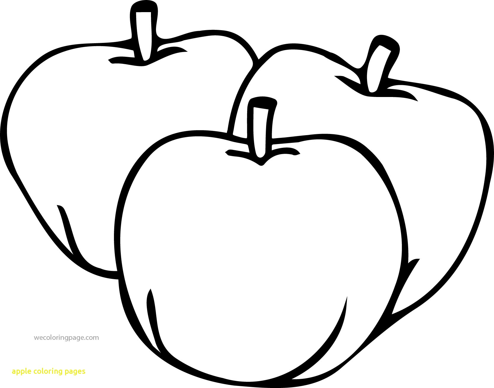coloring apple page apples coloring pages team colors page apple coloring