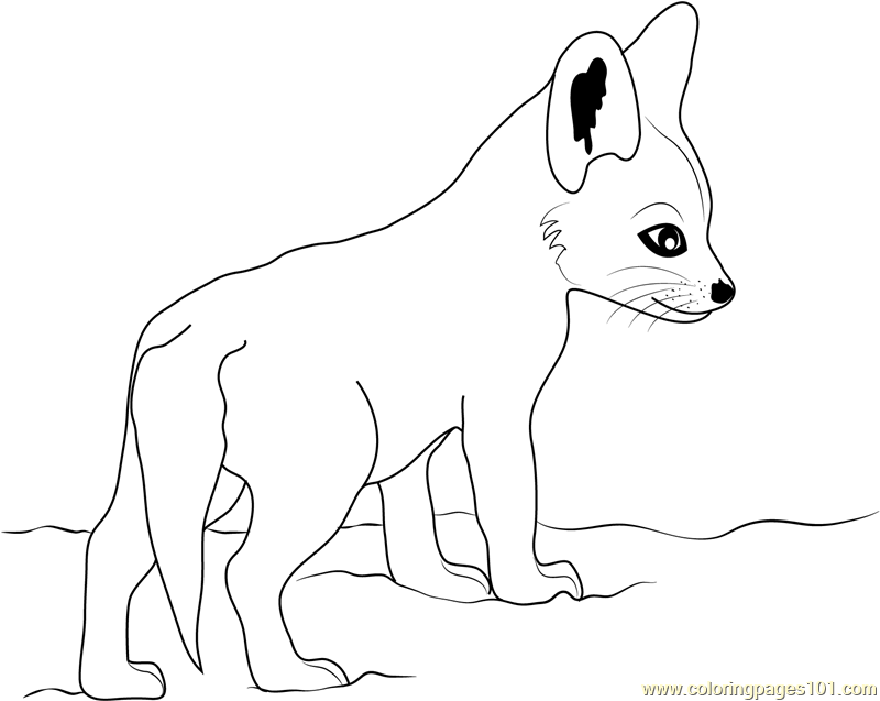 coloring baby fox coloring pages animated baby fox coloring page coloring fox baby
