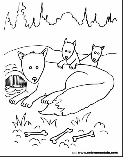 coloring baby fox cute baby fox coloring pages coloring home coloring baby fox