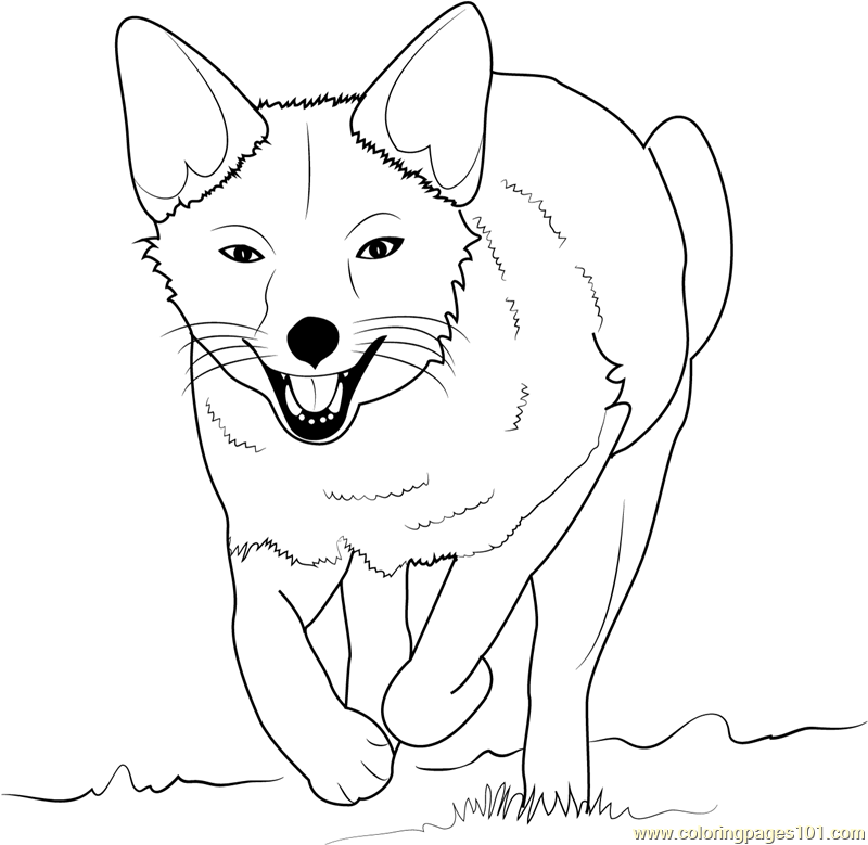 coloring baby fox cute baby fox coloring pages coloring home fox baby coloring