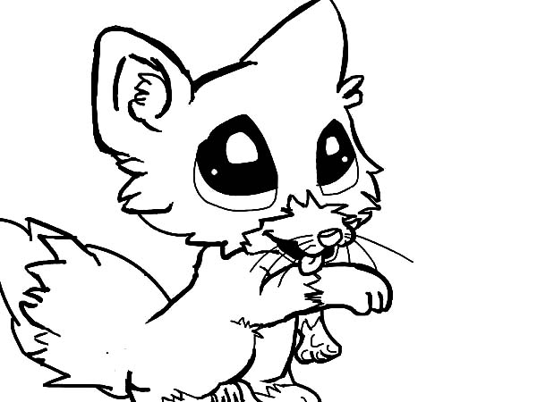 coloring baby fox cute baby fox drawing free download on clipartmag coloring baby fox