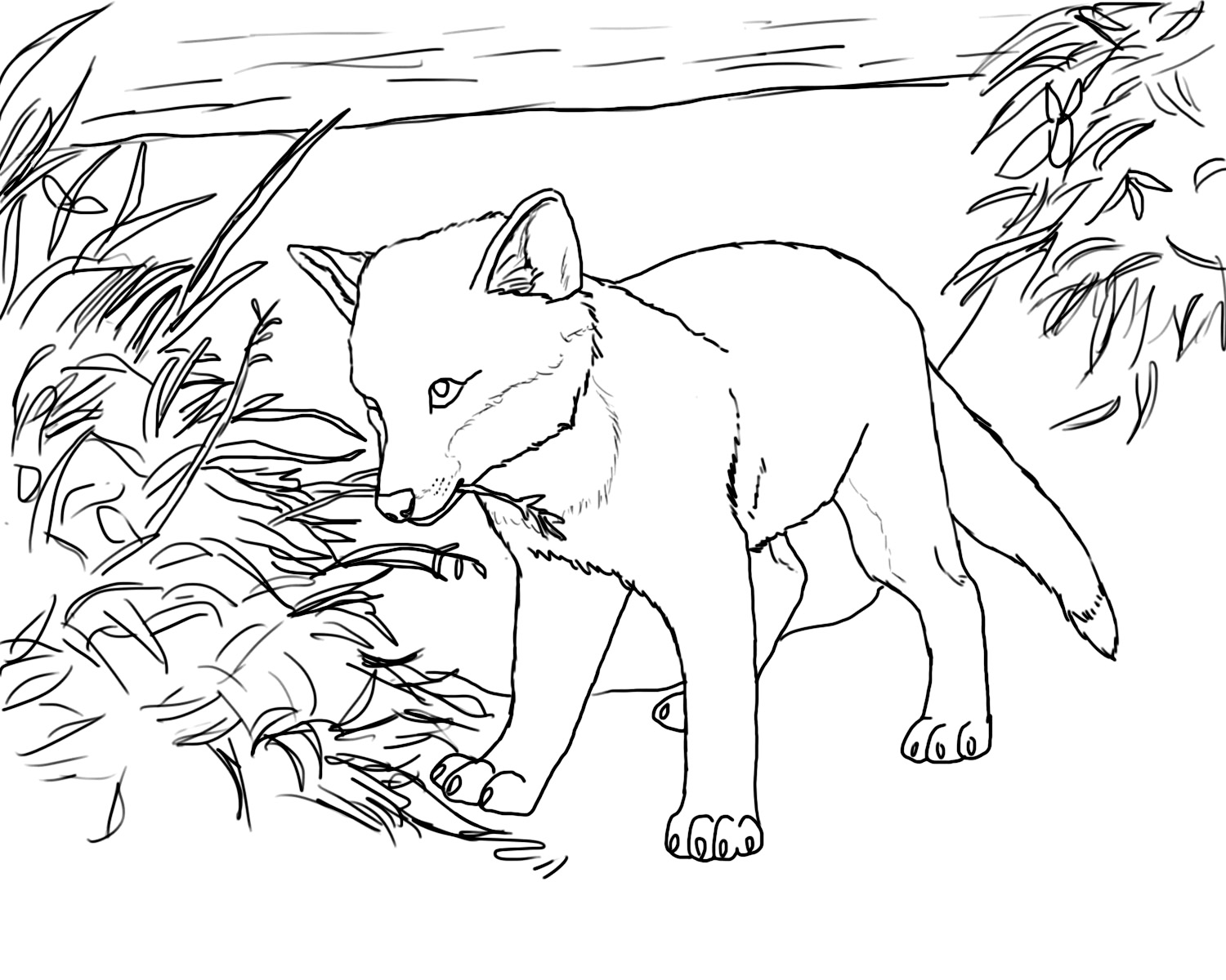 coloring baby fox cute fox coloring pages ideas for kids cute fox drawing coloring baby fox