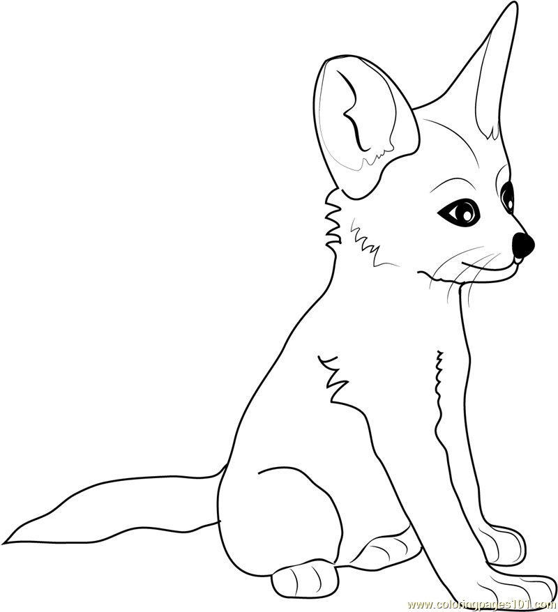 coloring baby fox fox coloring pages coloring pages to download and print coloring fox baby