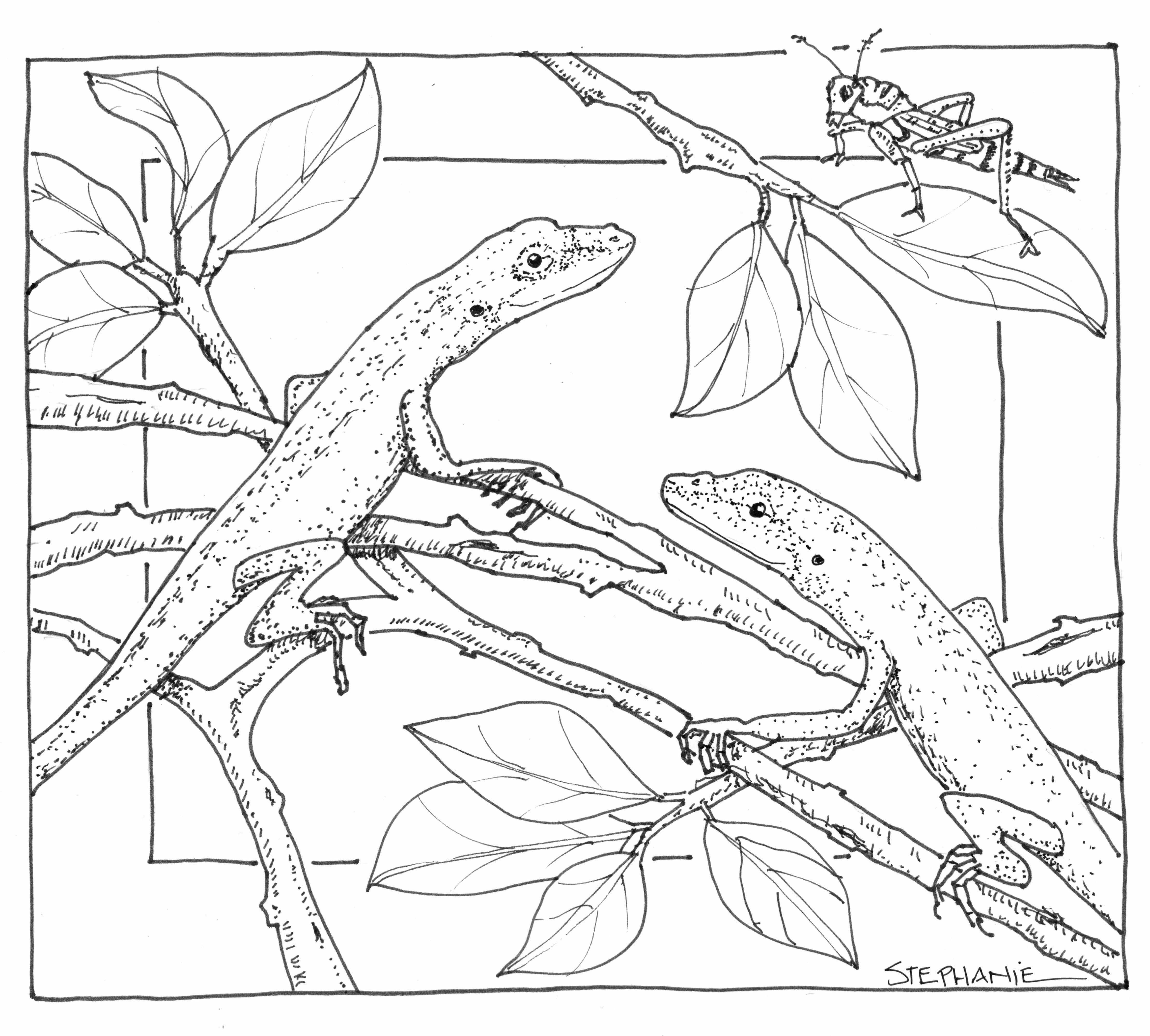 coloring book nature scenes winter landscape coloring pages at getdrawings free download coloring nature scenes book