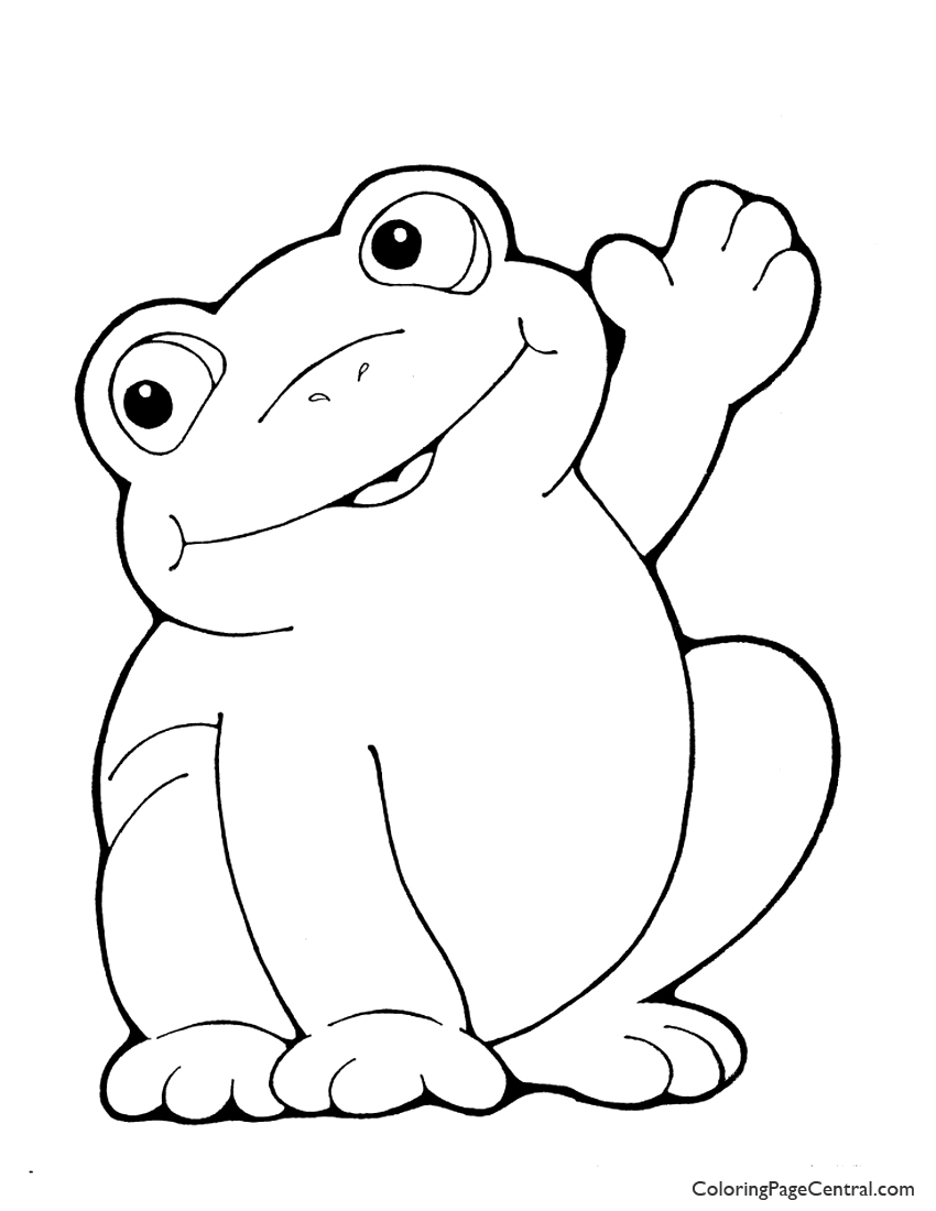 coloring book picture of a frog frogs to print for free frogs kids coloring pages frog a coloring book of picture