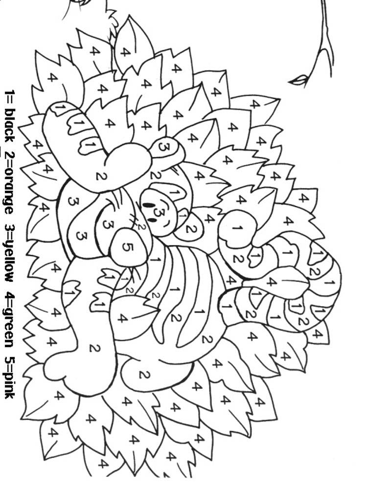 coloring by number coloring pages color by number koala stock illustration download image by coloring pages number coloring