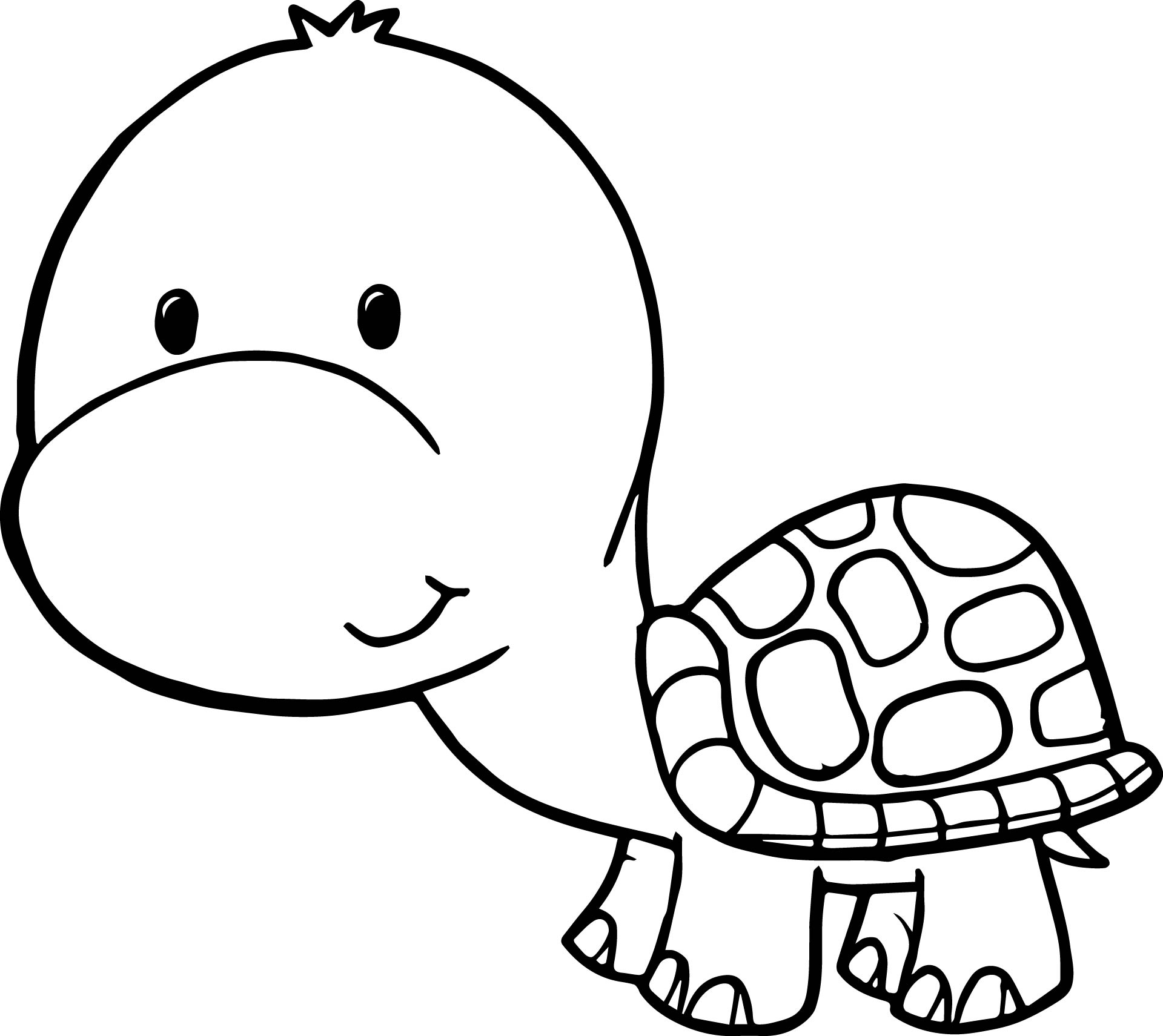 coloring cartoon clipart tortoise for coloring clipart best clipart cartoon coloring