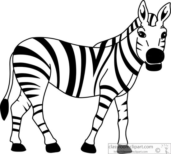 coloring clipart black and white zebra animals black and white outline clipart african zebra black and zebra clipart white coloring