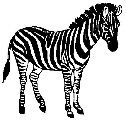 coloring clipart black and white zebra baby animal clipart black and white clipground and white coloring zebra black clipart