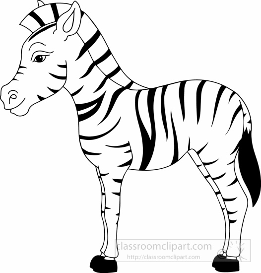 coloring clipart black and white zebra free clipart of a zebra white black and zebra clipart coloring