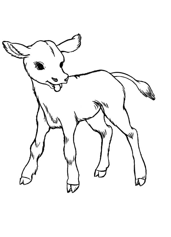 coloring cow drawing easy free easy to print cow coloring pages tulamama cow coloring drawing easy