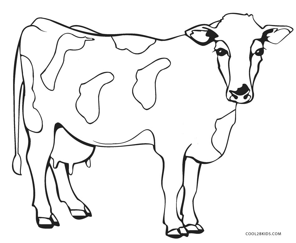 coloring cow drawing easy free printable cow coloring pages for kids cool2bkids drawing cow easy coloring