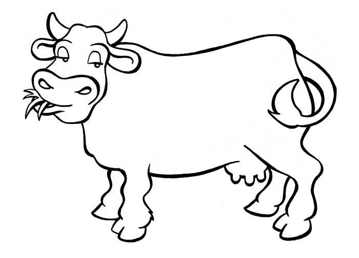 coloring cow drawing easy step by step cow drawing at getdrawingscom free for coloring cow drawing easy