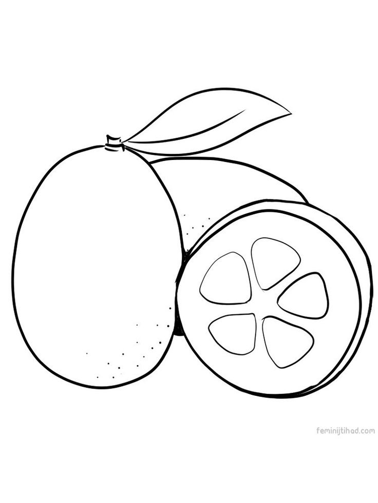 coloring different fruits delicious fruit coloring pages to print stpetefestorg coloring different fruits