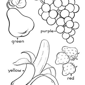 coloring different fruits different kind of fruits and vegetables coloring page coloring different fruits
