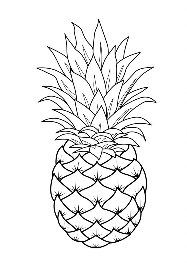 coloring different fruits free printable fruit coloring pages for kids coloring fruits different